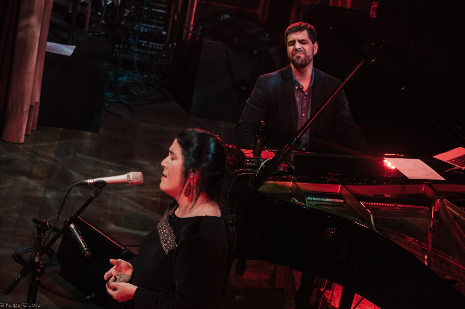 Imagem 11 do Evento Mônica Salmaso e André Mehmari