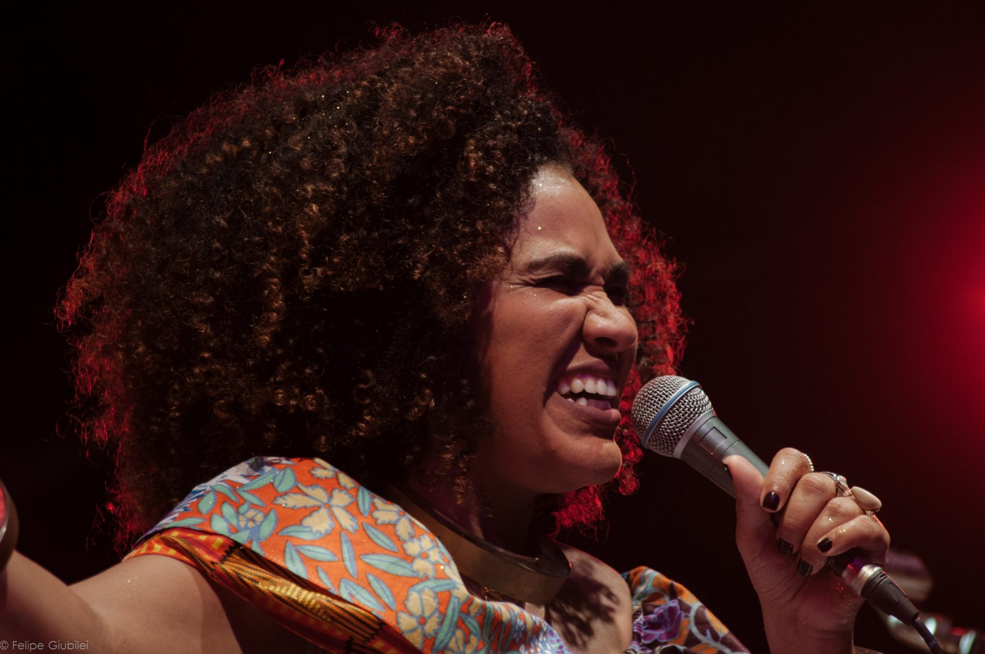 Imagem 1 do Evento Mariene de Castro
